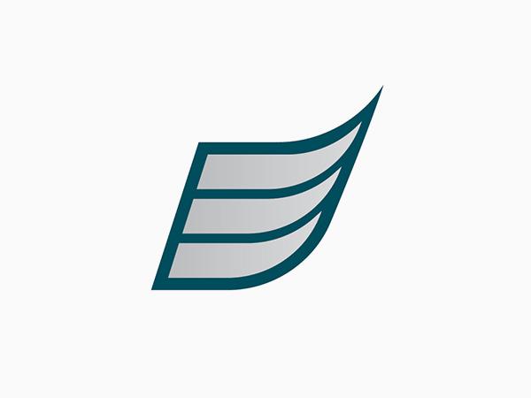 Philadelphia Eagles Alternate Logo by Matt McInerney
