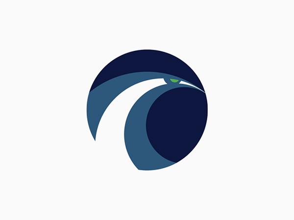 Seattle Seahawks Alternate Logo by Matt McInerney