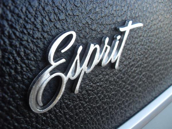 1971 Pontiac Firebird Esprit Logo