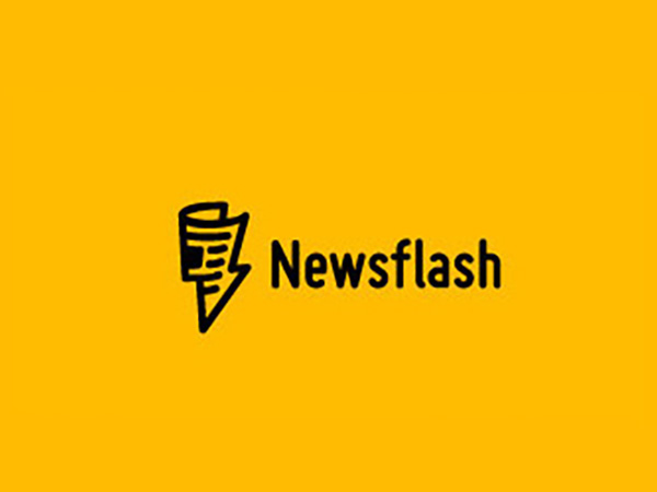 Newsflash Logo