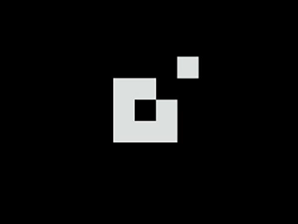 Pixel Daisy Logo