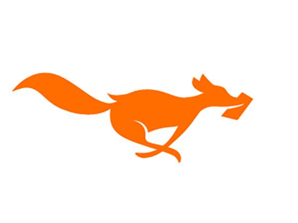 UserFox Logo