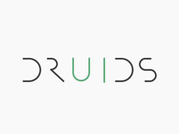 Druids Logo