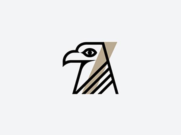 Hawk 7 Logo