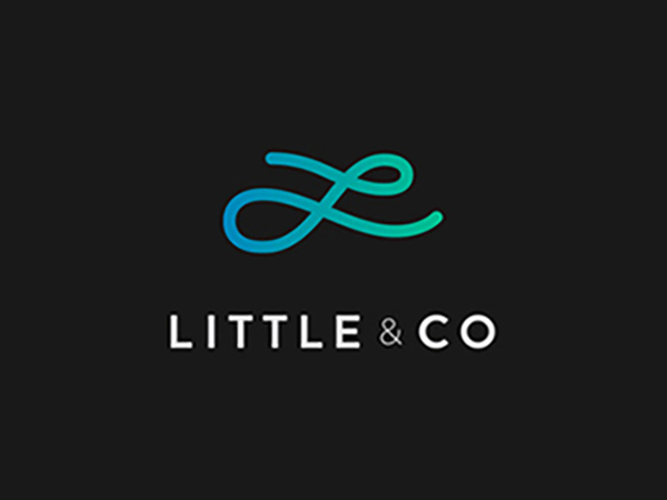 Little & Co Logo