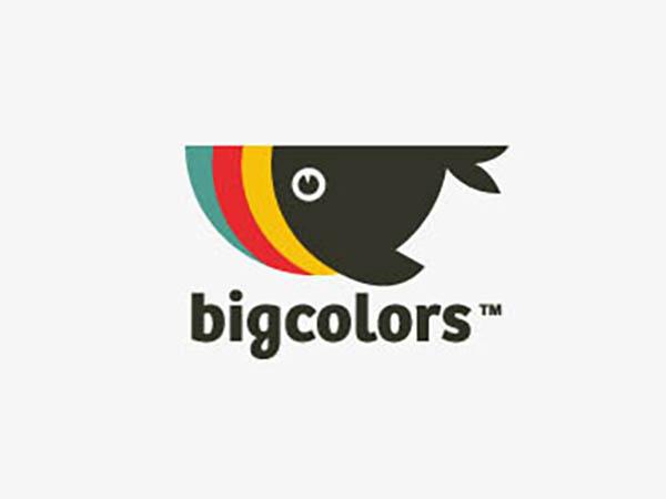 Big Colors Logo
