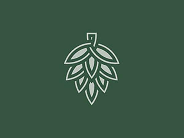 Hop Knot Logo
