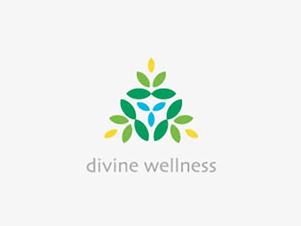 Divine Wellness Logo