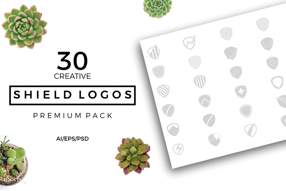 Shield Logo Premade Premium Pack