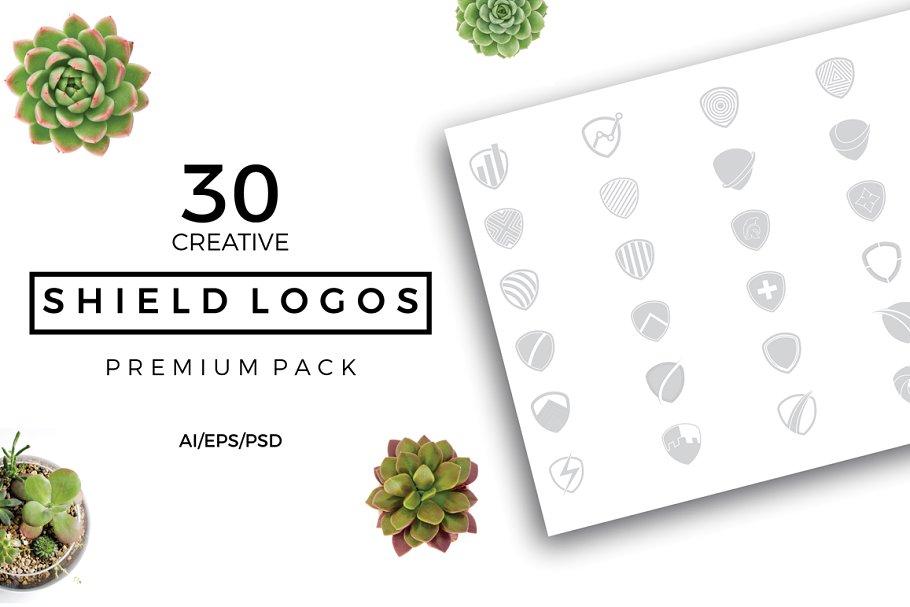 Shield Logo Premade Premium Pack