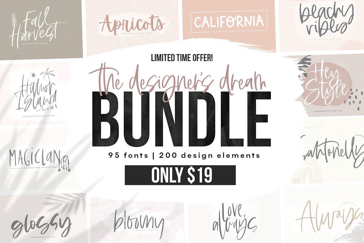The Designer'S Font Bundle