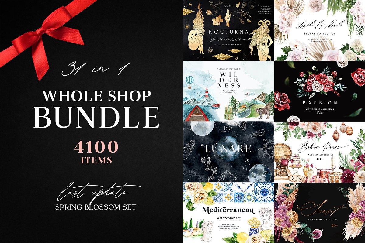 Whole Shop Bundle 4100 Items